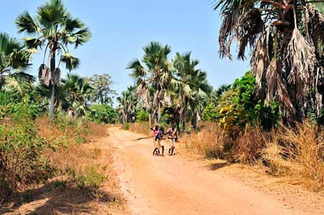 Casamance le Kassoumaye  (8j) - Image 6
