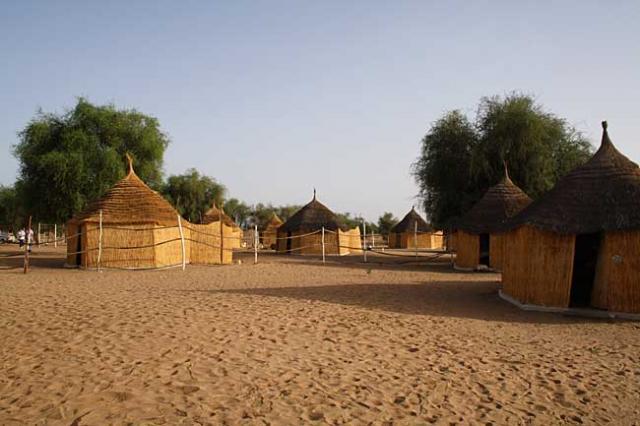 Baobabs, Dunes et Saloum (4j) - Image 4