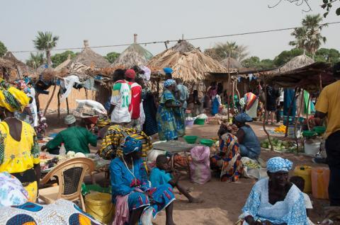 Excursion  au Sénégal