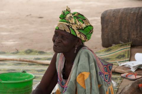 Brousse dans le Saloum - Image 1