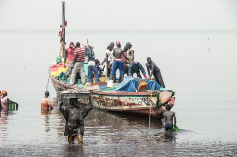 Excursion  au Sénégal